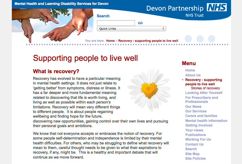 Recovery Strategy: Supporting Peope to Live Well