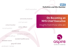 On becoming an NHS chief executive: insights from those who are